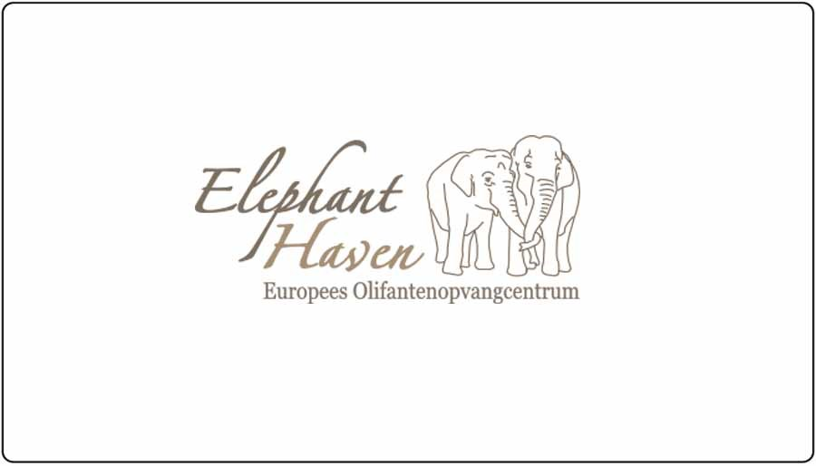 Olifant haven